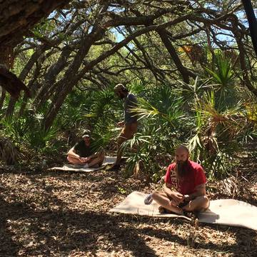 1 day Semi private daytimeAyahuasca  ceremony – Nov. 15-16