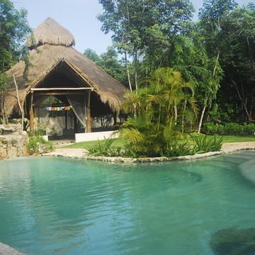 Heart of the Jungle: 7-Day Bluestone Ayahuasca Retreat in Cancun, Mexico: January 24th – 31th 2019 –