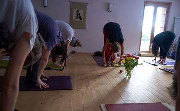 Yoga-Seminar