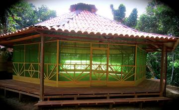 9 days Ayahuasca Retreat