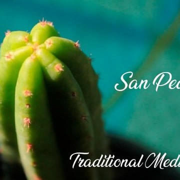 San Pedro (Huachuma) + Yoga and Treks  Retreat in the Sacred Valley, Cusco - Peru