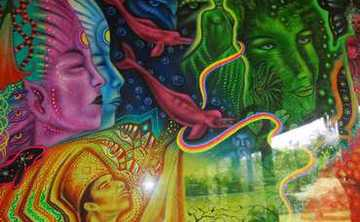 12 Day Ayahuasca Retreat