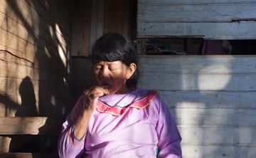 Ayahuasca Retreat and Shipibo Master Plant Diet  (Ajo Sacha, Bobinsana, Chiric Sanango, and other)