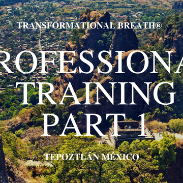 Transformational Breath® Level 4A: Mexico