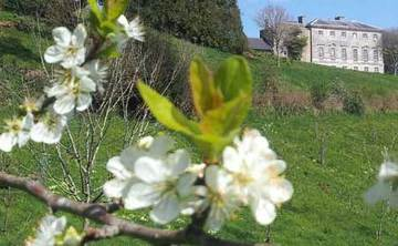 Sharpham House: Spring Unfolding: a 5-night retreat