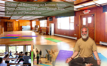 Healing and Rejuvenating our Immune System, Nerve, Glands and Hormones Through Yoga, Exercise and Detoxification Practices