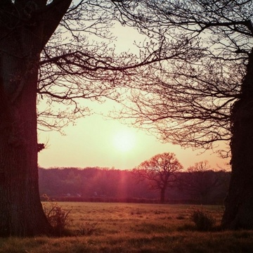 Winter Warmer Yoga Weekend Retreat in Somerset