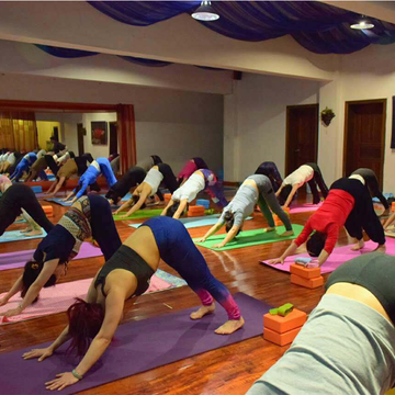 300 Hour Yoga Teacher Training Rishikesh