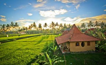 Deepen your Bliss-a unique yoga adventure at Bali Spirit Festival & tranquil rice field location