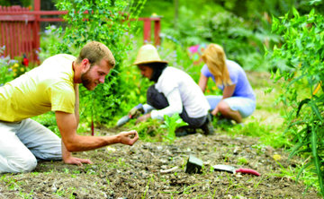 Permaculture Weekend: Social Permaculture and Community Building
