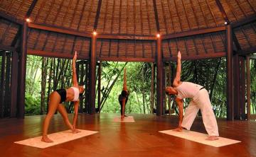 Yoga & Wellness Retreat in Bali!