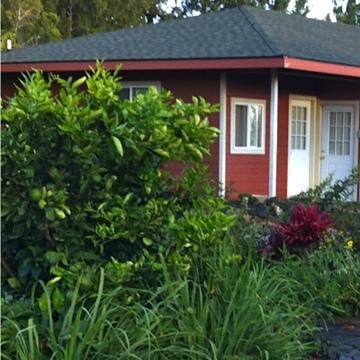 Garden Hale
