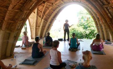 TREE Yoga Immersion