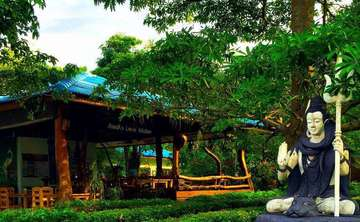 Ananda Pure Yoga Retreat - June 5 to 12, 2016