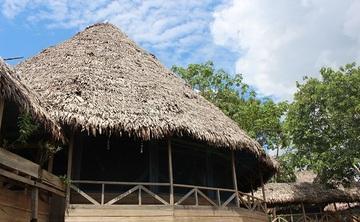 7 Day Amazon Ayahuasca Adventure