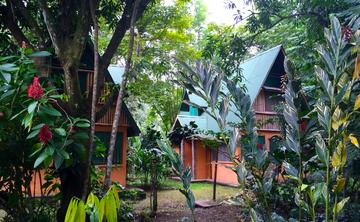 7 Day Epic Awakening in Manuel Antonio, Costa Rica.