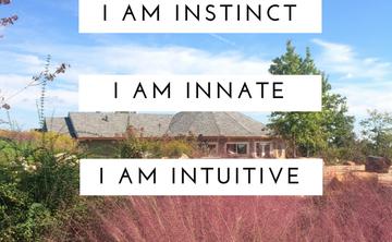 Original Self .:. Rebirthing Breathwork, Instinctual Yoga, & Sound Healing