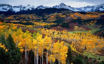 Weekend Yoga Retreat in Aspen, Colorado 2014 : reTREAT yourself