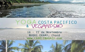 Yoga and Veganism retreat in the Pacific Coast, Colombia,