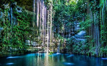 October Iboga Retreat in Mayan Yucatán