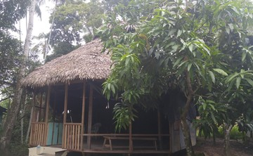 7 Days Ayahuasca Retreat