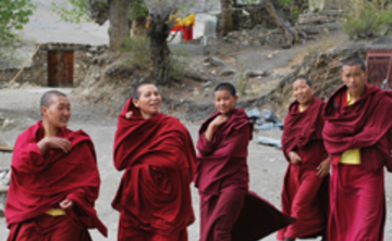 living dharma in a speedy world