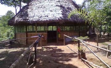 Ayahuasca Retreat 12 days