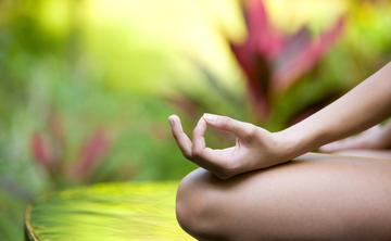 Health and Wellness Yoga Retreat in Rishikesh, India