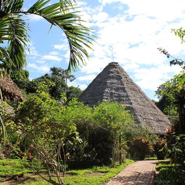 Blue Morpho Shamanic Ayahuasca & Sacred Plant Retreats