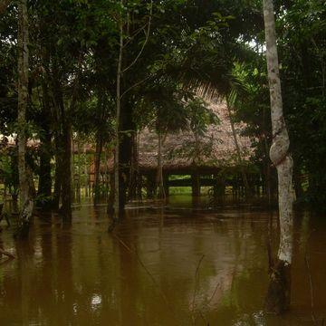 Centro DAS (Iquitos, peru)