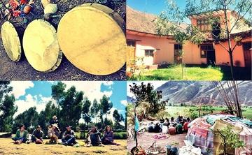 Ayahuasca & San Pedro Medicine Process