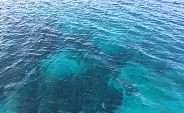 Greek Meander 2017