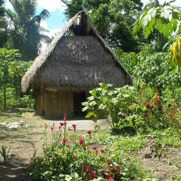 Cleansing, Healing & Learning in the Amazon - May