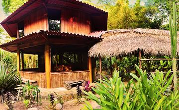 14 Days Ayahuasca & Yoga Retreat in the Amazon, Peru - December 2017