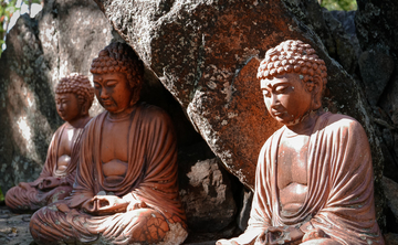 The Serenity of Full Awareness: Asana, Anatomy, Philosophy, and the Breath