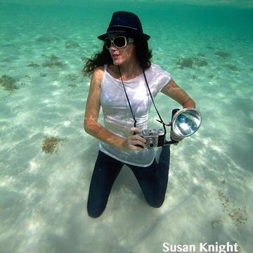 Susan Knight ~ Underwater Photographer