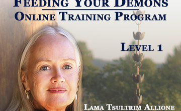 Feeding Your Demons® Online Training Program: Level One