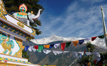7 Day's of Soul Yoga Retreat In Dharamsala, India