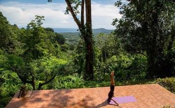 Reiki and Yoga Rainforest Retreat