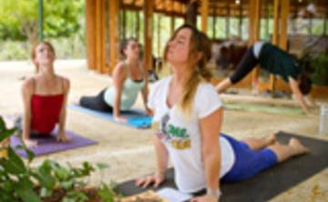 Iyengar Cycle Yoga – Aug 2017