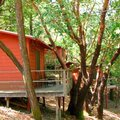 Four Springs Retreat Center