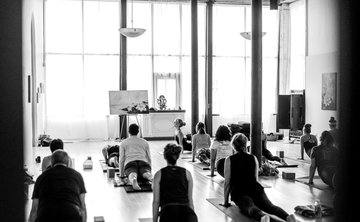 Sattva Rejuvenation Retreat: Regenerative Practices for Vinyasa Flow Teachers