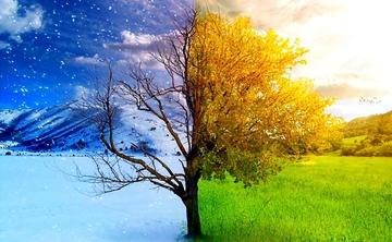 Vivre avec les Saisons – le Yoga et la Nature / Yoga and Nature – Living with the Seasons