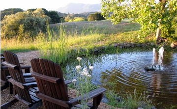 Calistoga Yoga Retreat