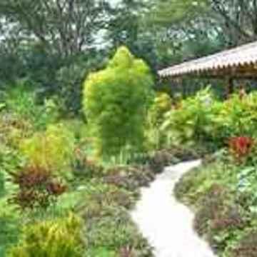 Gentle Earth Retreats Costa Rica