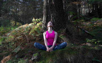 Into the Woods Yoga Retreat – Cumbria