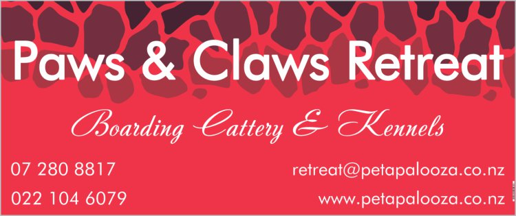 Paws   claws banner