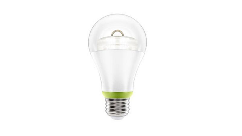 Bulbs_20151225