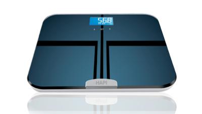 Hapi_scale_h_20160217