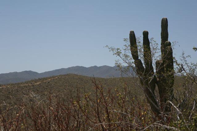 Rancho Cerro, East Cape